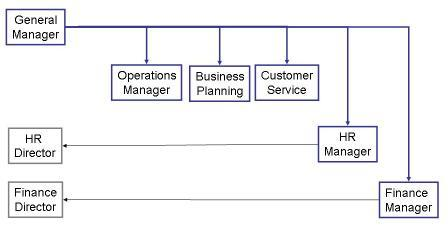 Matrix Organization Chart 1