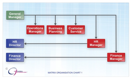 organizational matrix