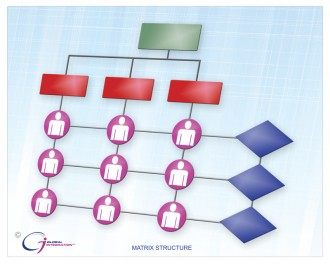 graphic organization structure