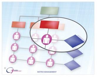 Matrix organization chart