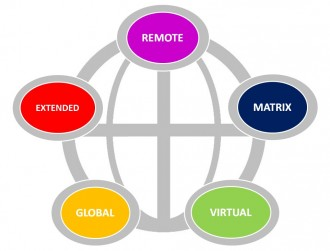 Remote, Extended, Global, Virtual, Matrix